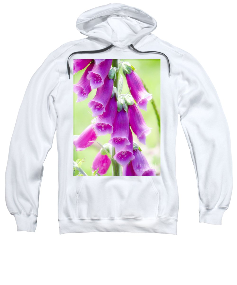 Foxglove Sweatshirt featuring the photograph Faerie Bells by Rory Sagner