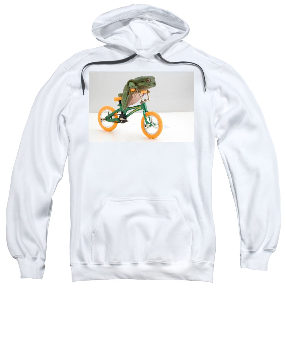 Amphibian Sweatshirt featuring the photograph Frog On A Bicycle by Corey Hochachka