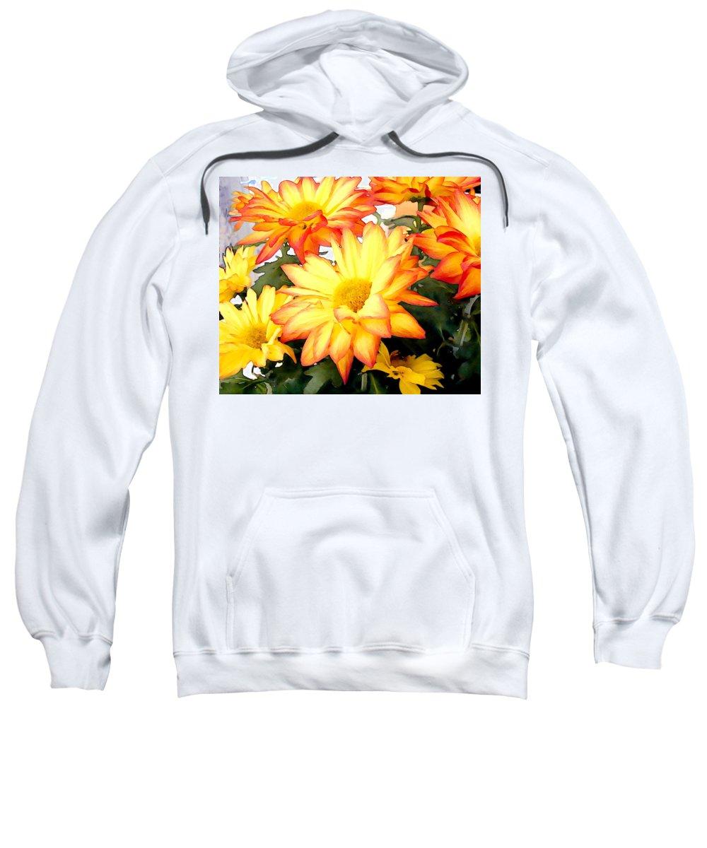 Flower Flowers Mums Chrysanthemum Garden Flora Floral Mum Chrysanthemums Fall Autumn Gold Sweatshirt featuring the painting Gold And Red Autumn Mums by Elaine Plesser