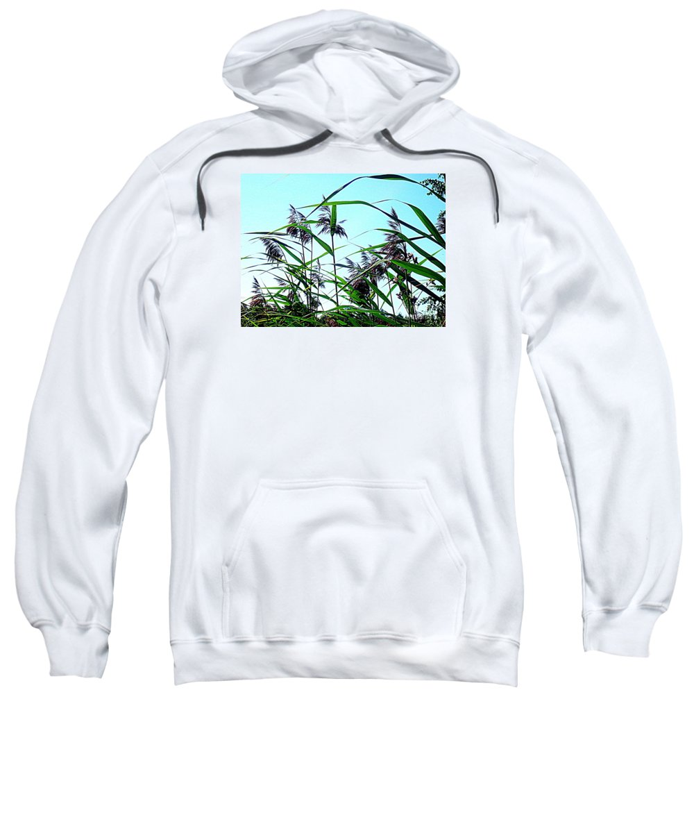 Blue Canvas Prints Sweatshirt featuring the photograph Hay In The Summer by Pauli Hyvonen