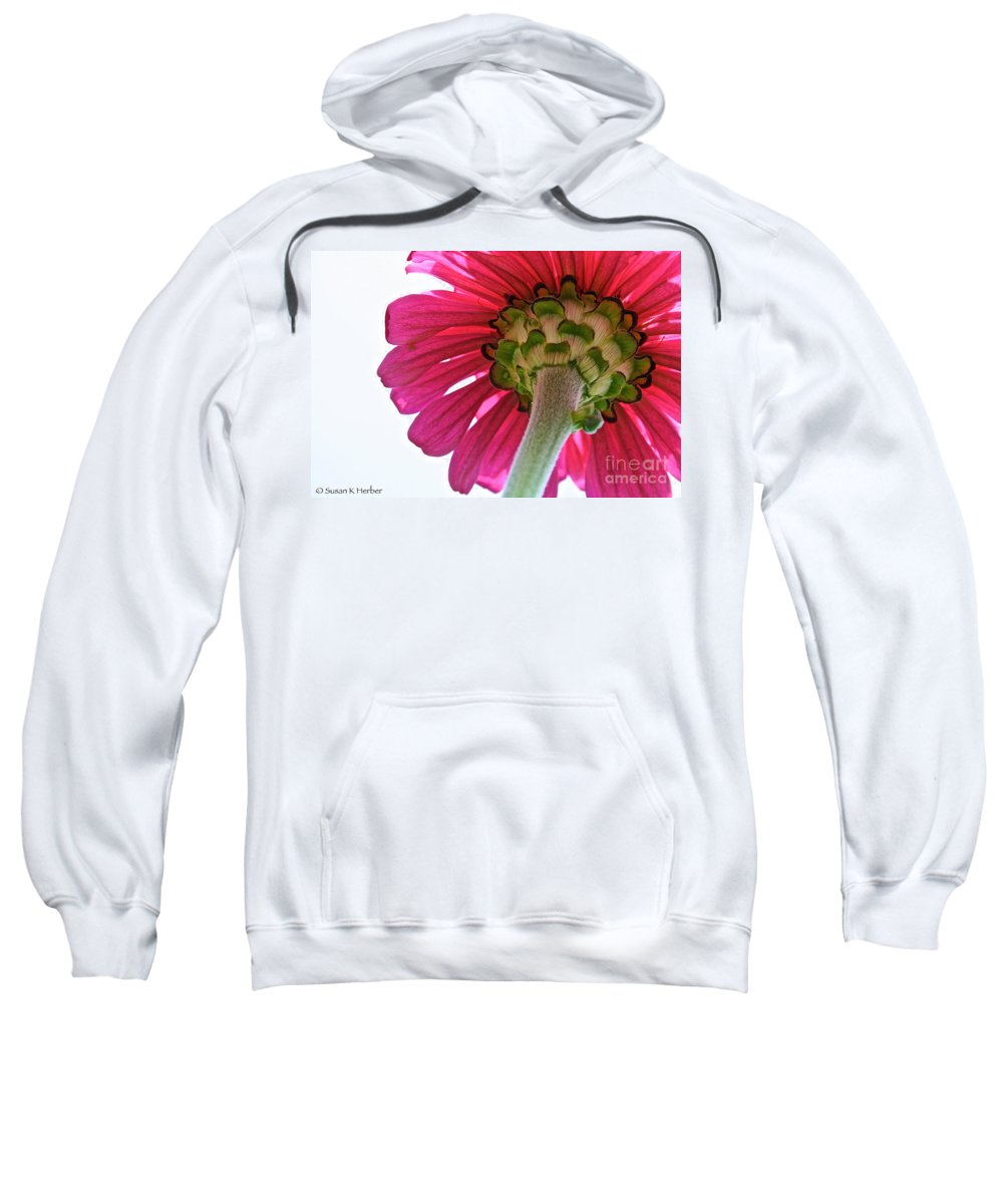 Plant Sweatshirt featuring the photograph Higher Power by Susan Herber