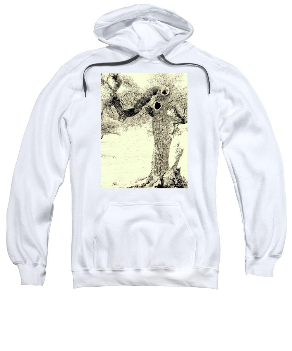 Scary Oak Tree Framed Print Sweatshirt featuring the photograph Ichabod Lane by Joe Jake Pratt