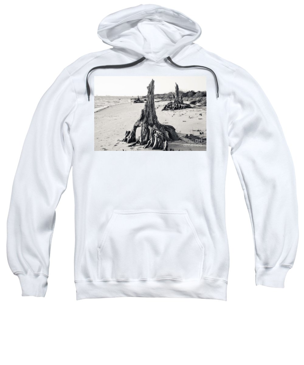 Tree Sweatshirt featuring the photograph Invasion by Joan McCool