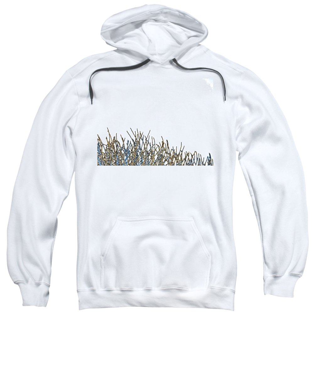 Minimalism Sweatshirt featuring the photograph Kinda Like Grass by Lenore Senior