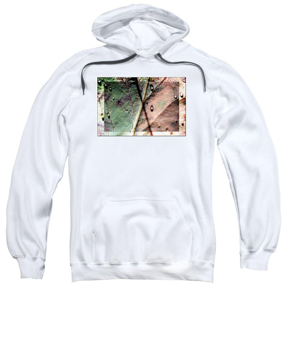 Macro Leaf Print Sweatshirt featuring the photograph Leaf After Rain by Marie Jamieson