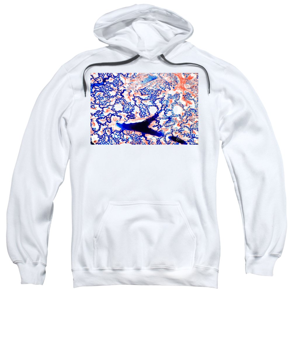 Histology Sweatshirt featuring the photograph Lung Thick Section by M I Walker