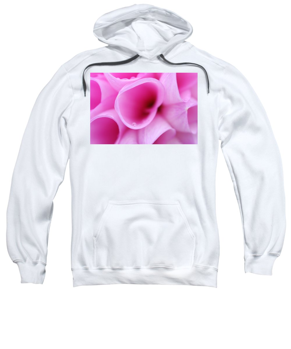 Macro Flower Petal Print Sweatshirt featuring the photograph Macro Petals by Marie Jamieson