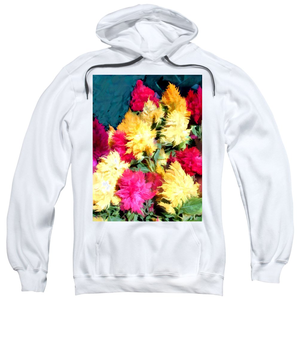 Flower Flowers Garden Celosias Flora Floral Nature Cockscomb Cockscombs Feathery Red Pink Yellow Gold Plumes Plume Celosia Natural Bloom Blooms Blossoms Blossom Bouquet Arrangement Colorful Plant Plants Botanical Botanic Blooming Gardens Gardening Tropical Sweatshirt featuring the painting Mixed Celosias In Fall Colors by Elaine Plesser