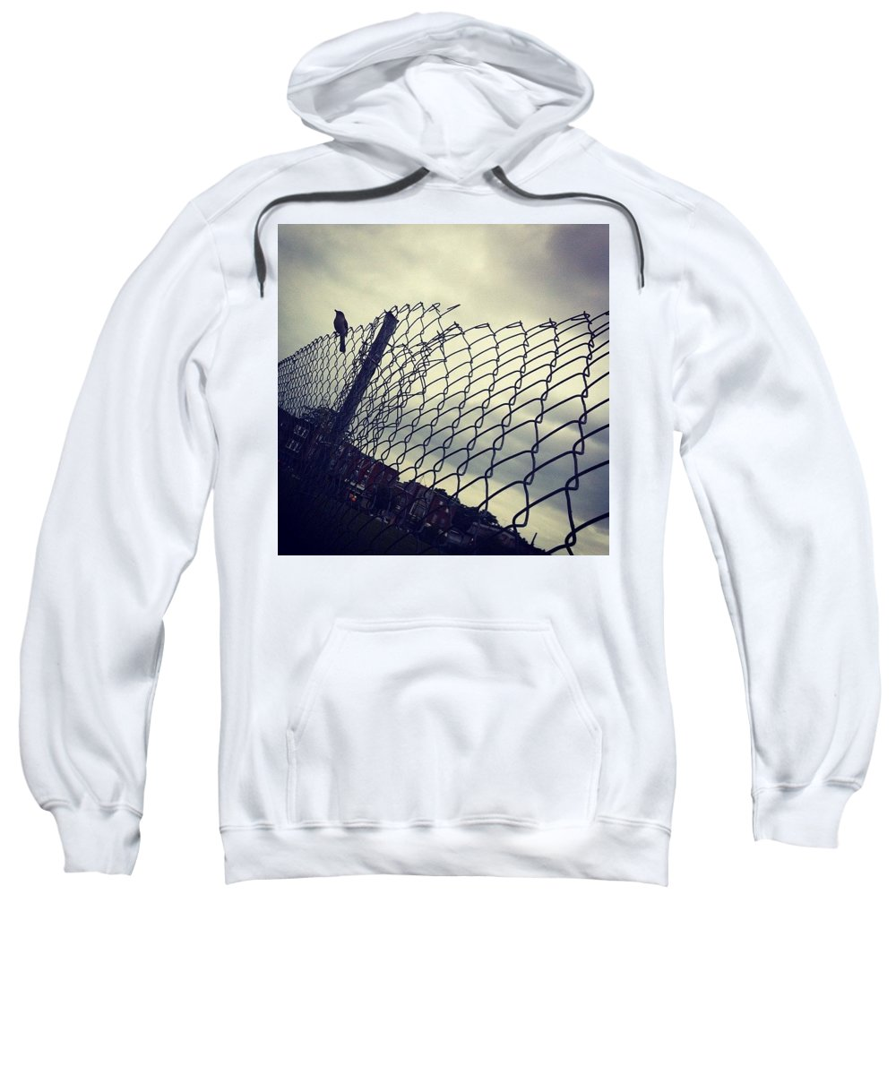 Mockingbird Sweatshirt featuring the photograph Mock. Yeah! Ing. Yeah! Bird. Yeah! by Katie Cupcakes