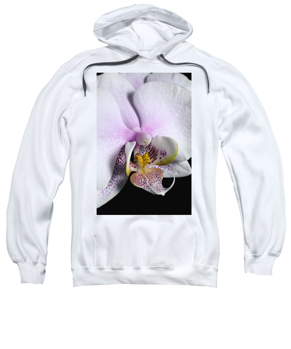 Column Sweatshirt featuring the photograph Orchid by David Chapman