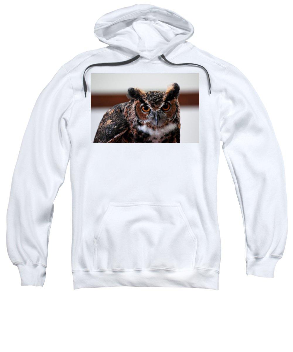 Usa Sweatshirt featuring the photograph Owl by LeeAnn McLaneGoetz McLaneGoetzStudioLLCcom