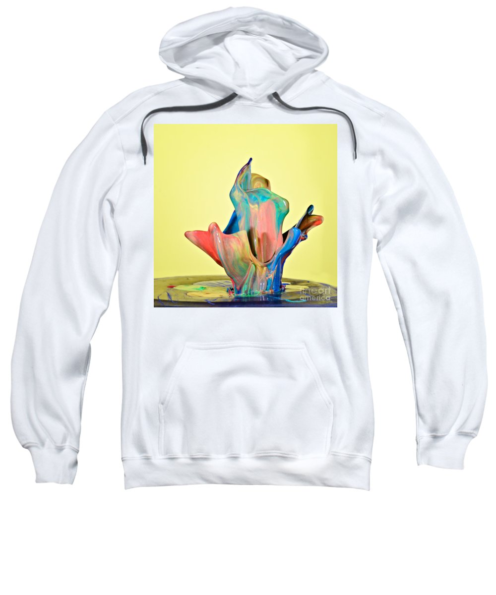 High Speed Sweatshirt featuring the photograph Paint Art by Susan Candelario