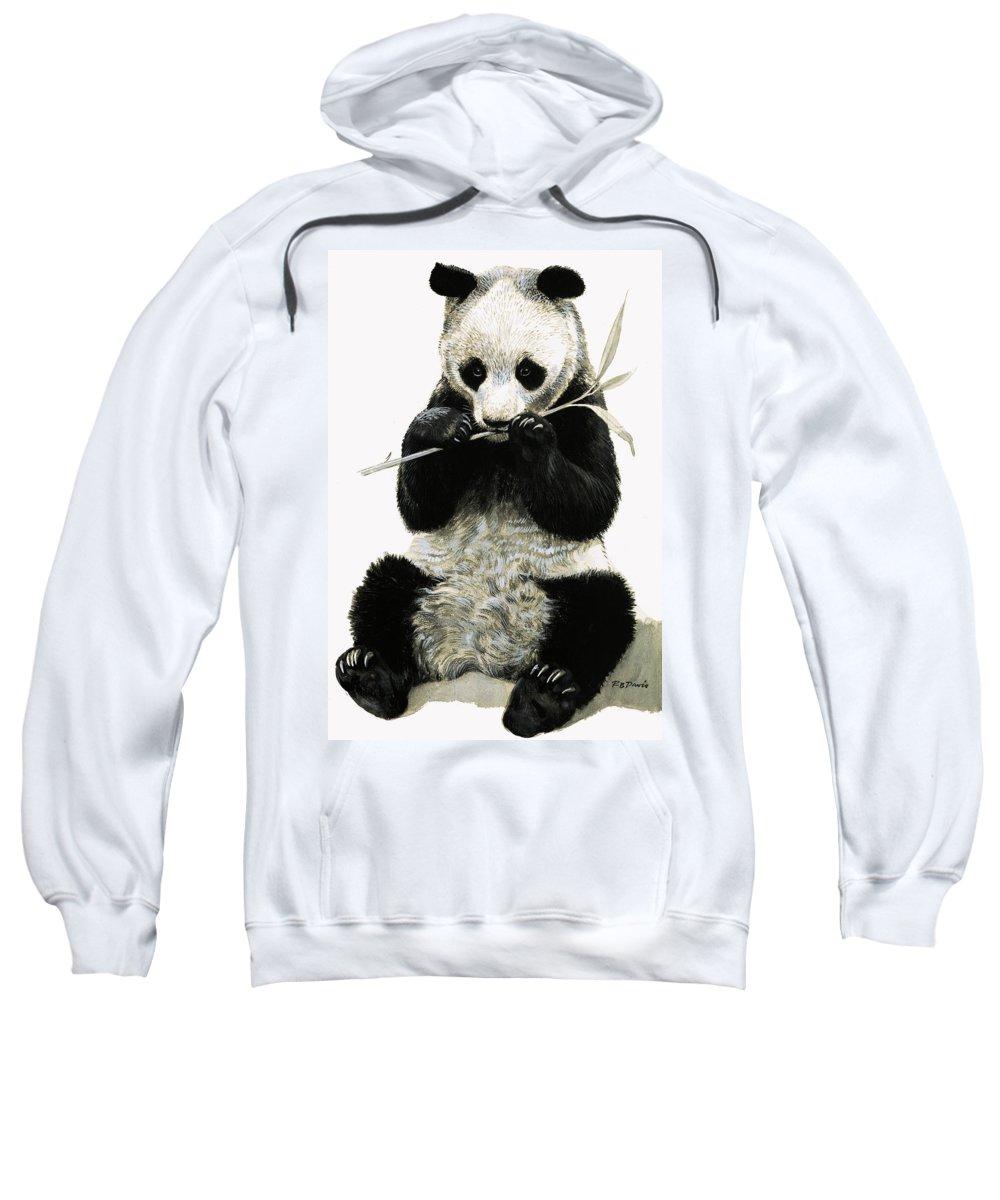 Animals; Nature; Wildlife; China; Panda Sweatshirt featuring the painting Panda by R B Davis