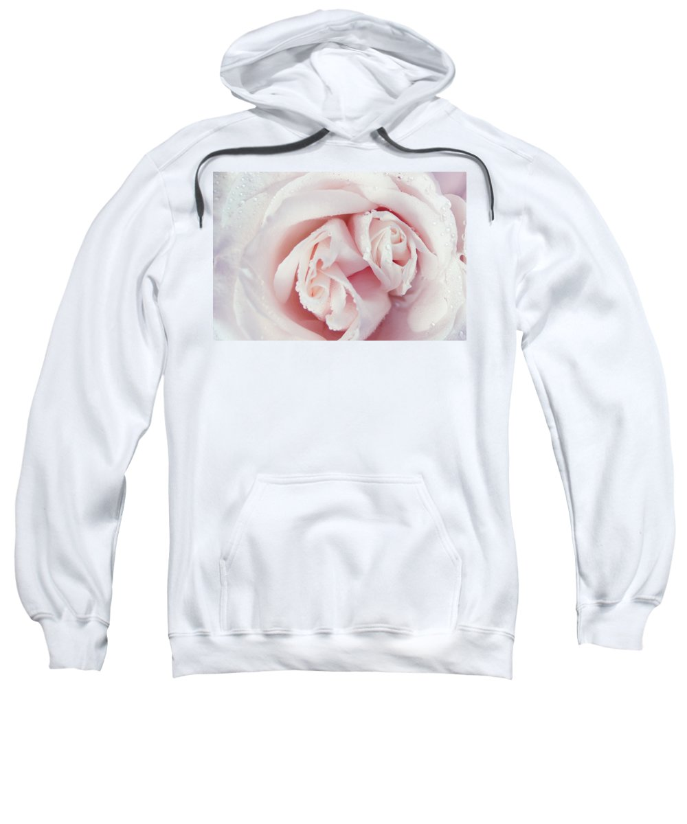 Flowers Sweatshirt featuring the photograph Passion For Flowers. One Rose Two Hearts by Jenny Rainbow