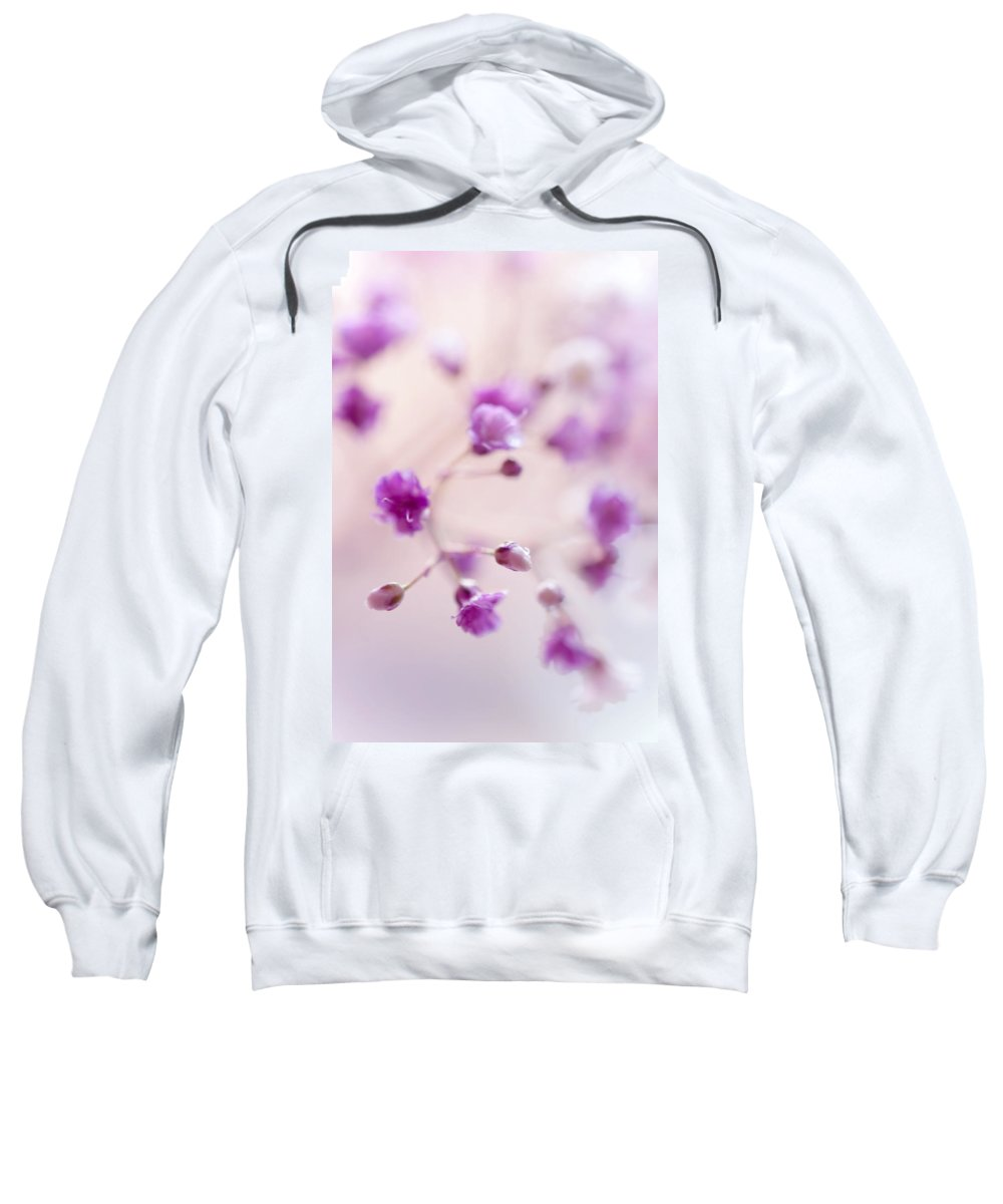 Jenny Rainbow Fine Art Photography Sweatshirt featuring the photograph Passion For Flowers. Purple Pearls Of Gypsophila by Jenny Rainbow