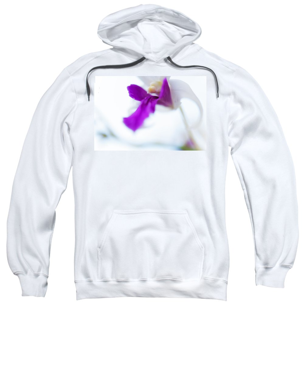 Flowers Sweatshirt featuring the photograph Passion For Flowers. Sweet Kiss by Jenny Rainbow
