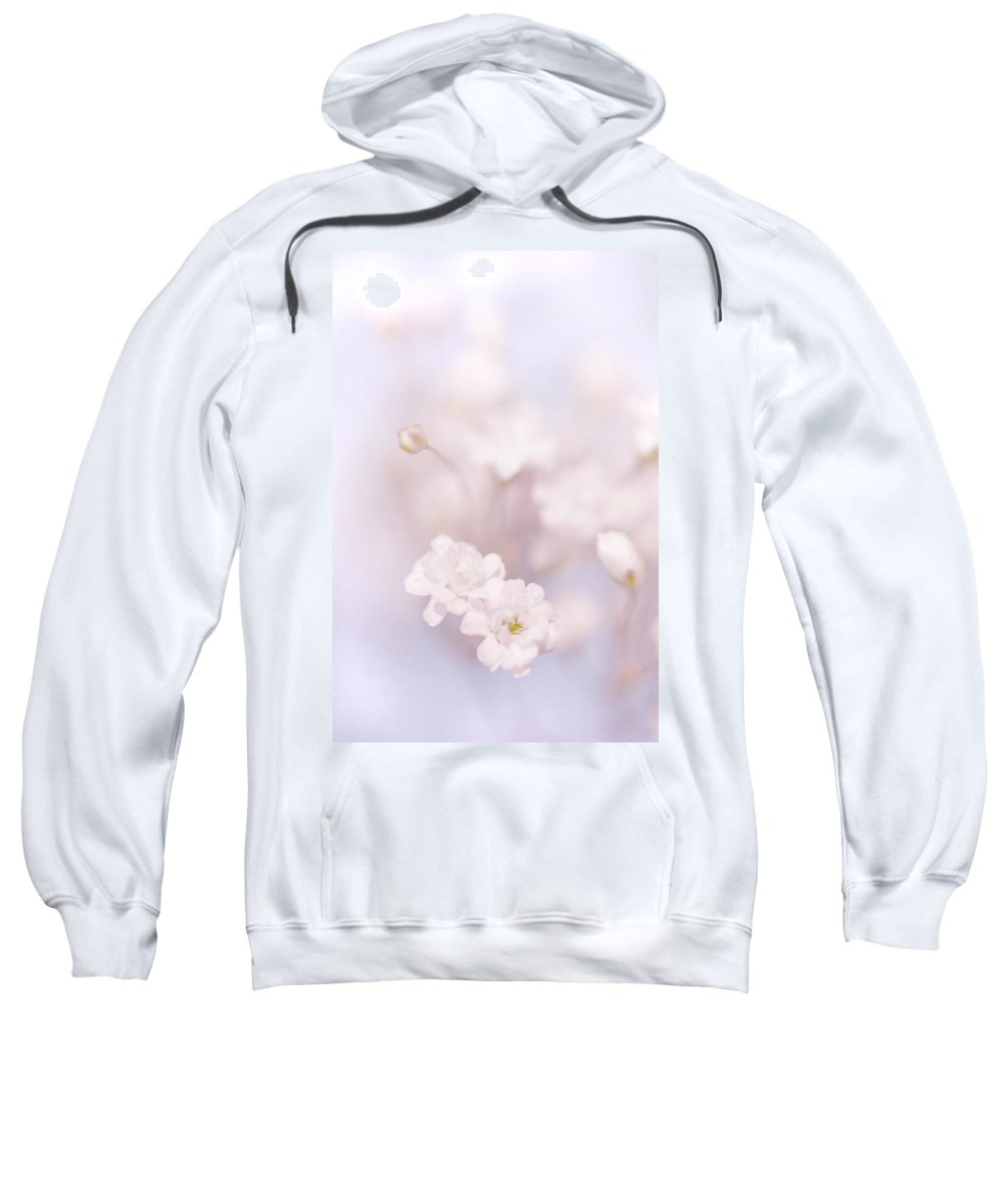 Jenny Rainbow Fine Art Photography Sweatshirt featuring the photograph Passion For Flowers. White Pearls Of Gypsophila by Jenny Rainbow