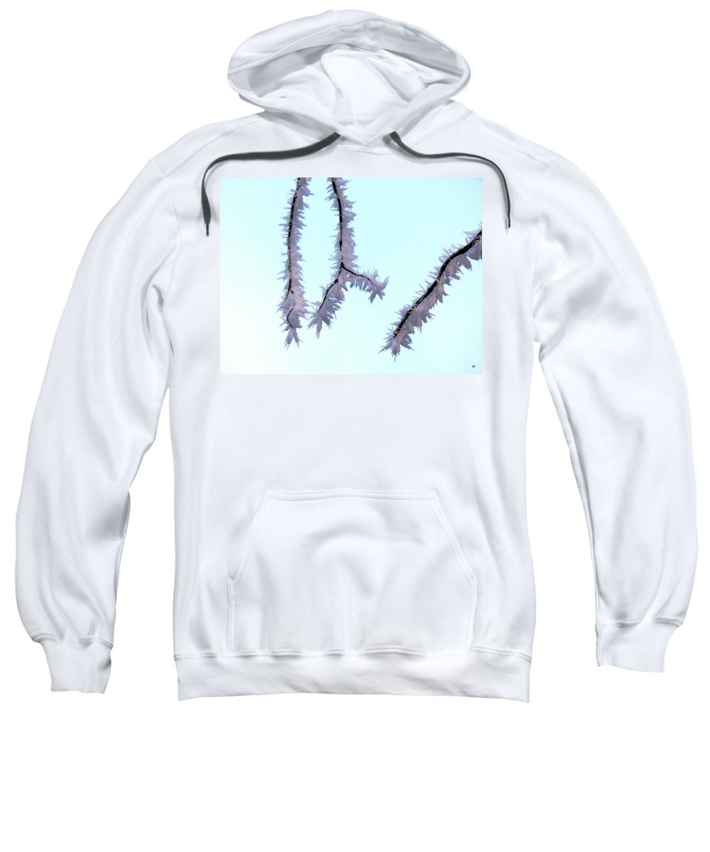 Frost Sweatshirt featuring the photograph Pastel Glow On The Frost by Will Borden