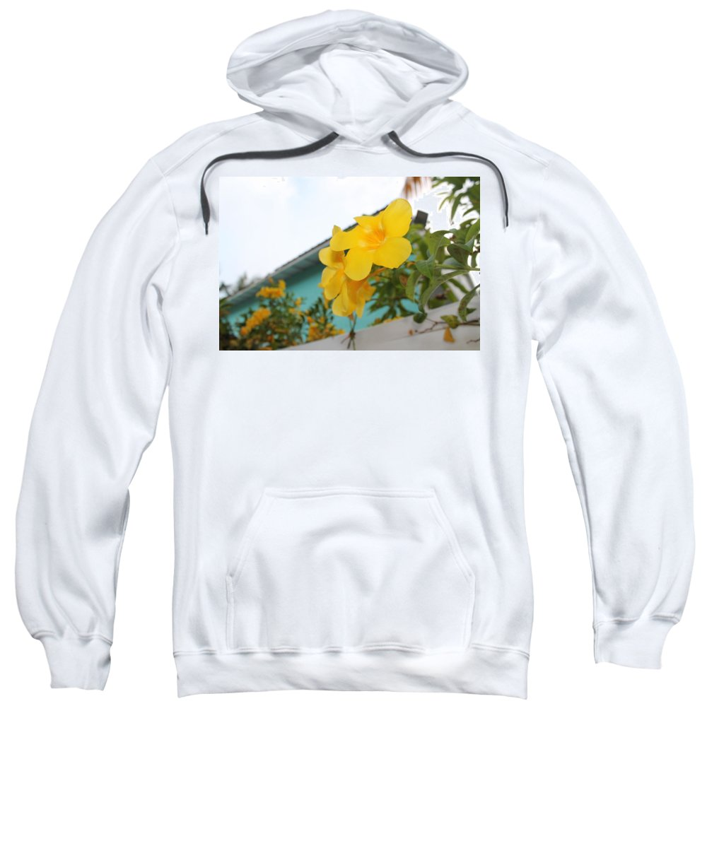 Yellow Tropical Flower Sweatshirt featuring the photograph Peeping Over The Fence by Catie Canetti