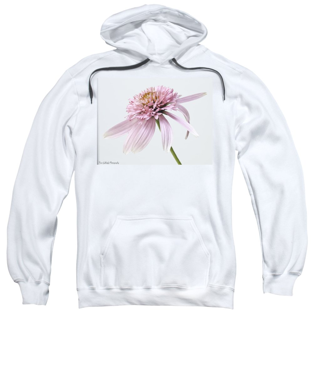 Flower Sweatshirt featuring the photograph Pink Cone Flower by Fran Gallogly