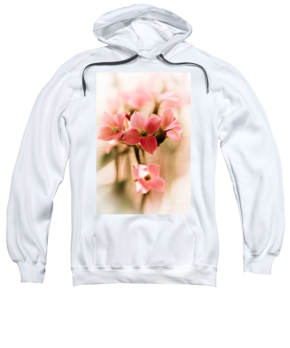 Flower Sweatshirt featuring the photograph Pink Floral 1 by Jill Smith