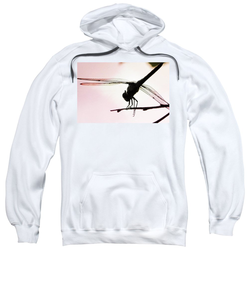 Sweatshirt featuring the photograph Pink Skies by Michele Nelson