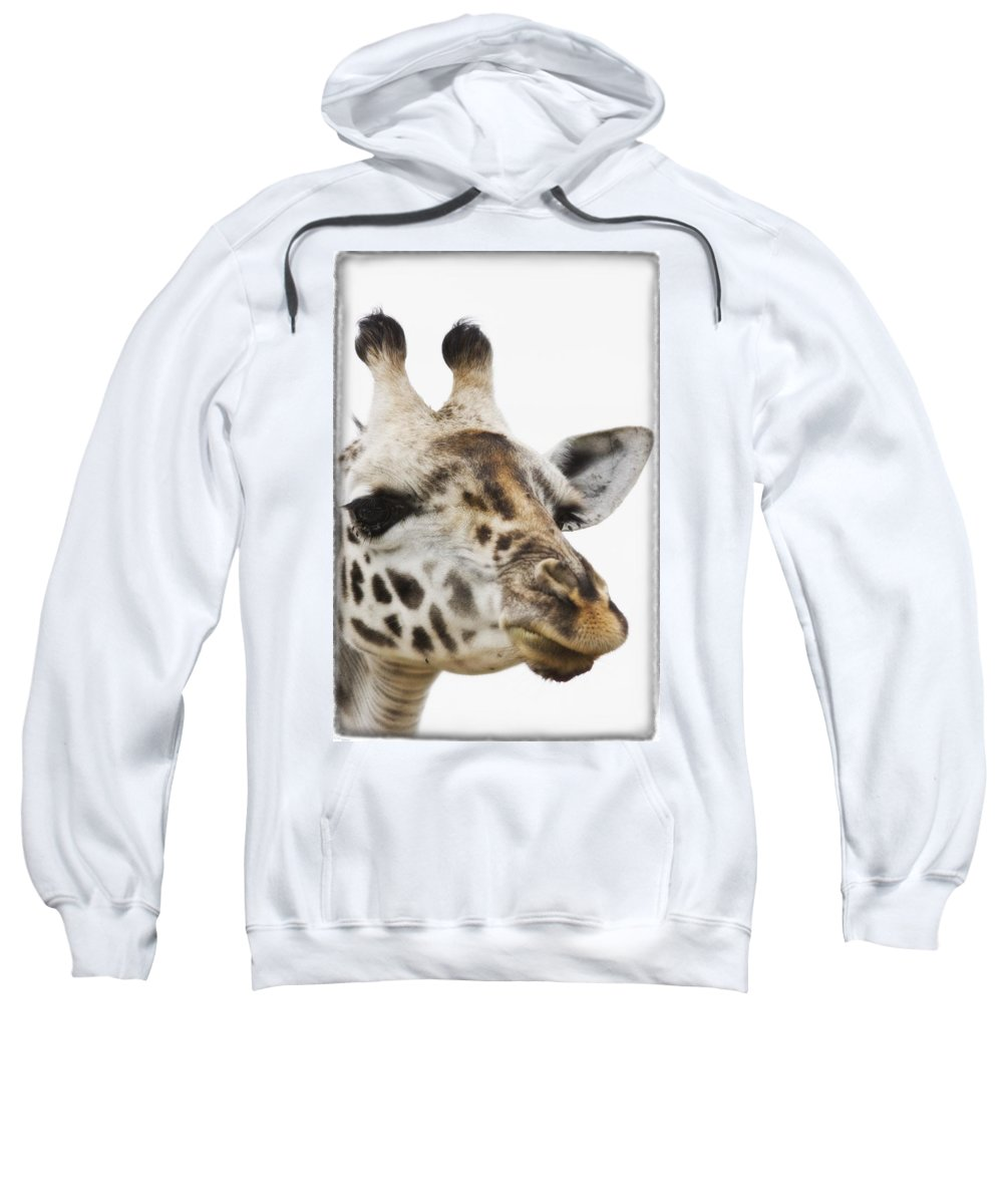 African Animal Sweatshirt featuring the photograph Portrait Of African Giraffe by Carson Ganci
