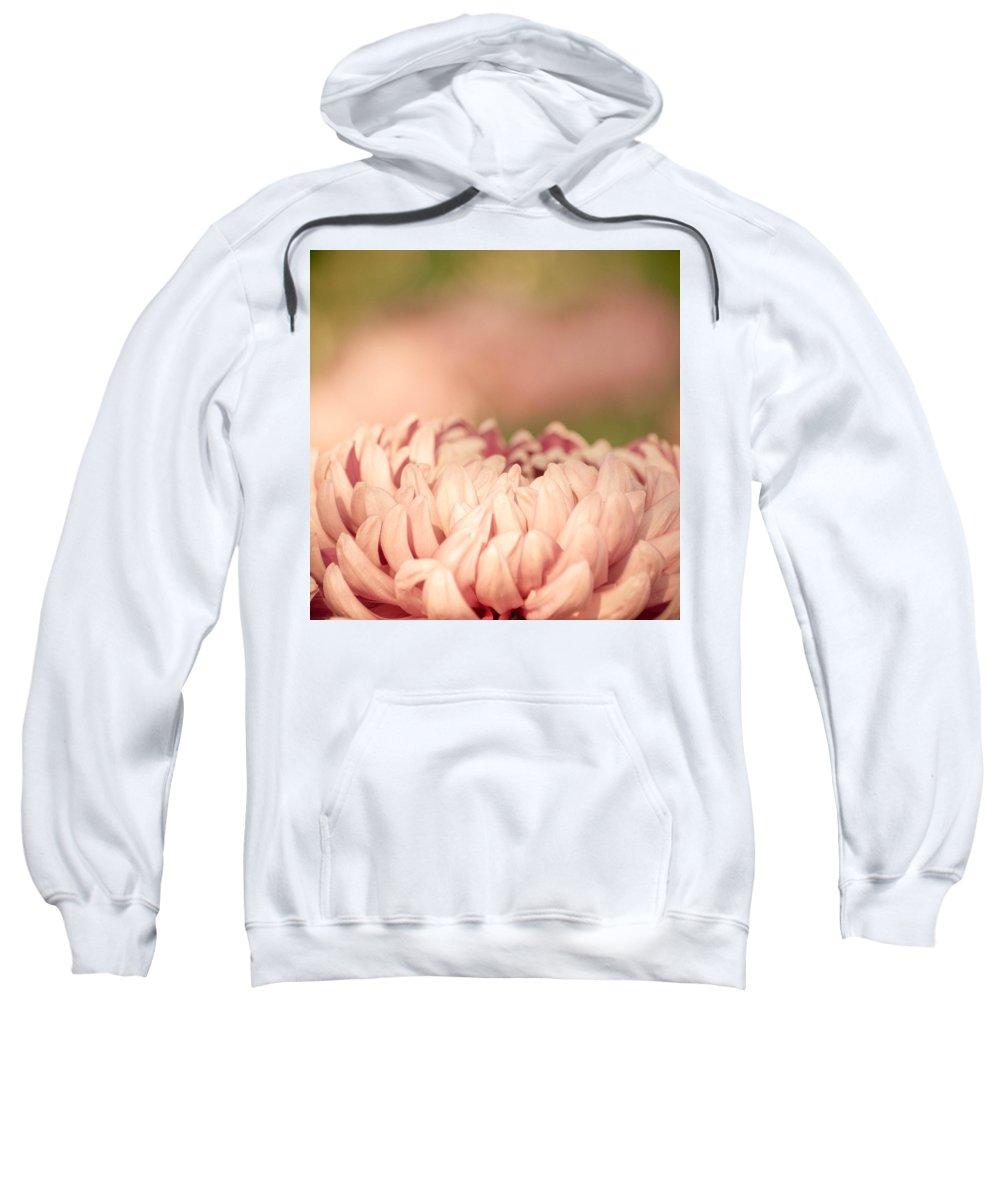 Dahlia Sweatshirt featuring the photograph Pretty Pastels by Trish Tritz
