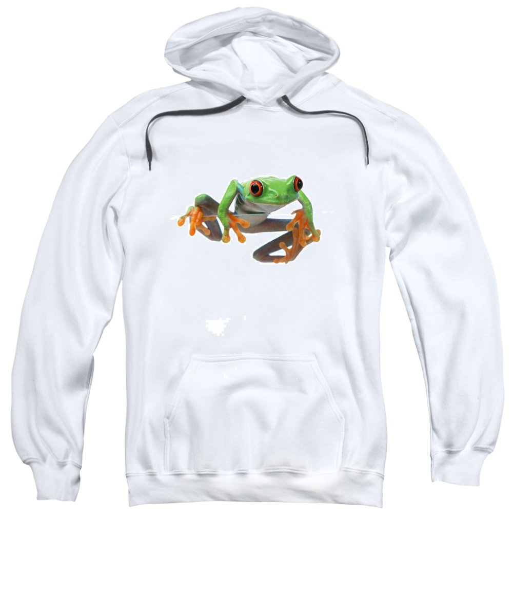 Color Sweatshirt featuring the photograph Red-eyed Treefrog by Corey Hochachka