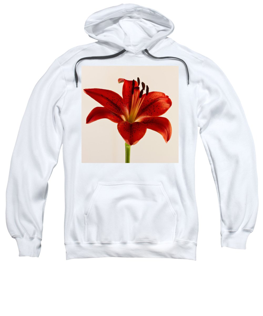 Red Lily Sweatshirt featuring the photograph Red Lily Number Three by Bill Swindaman