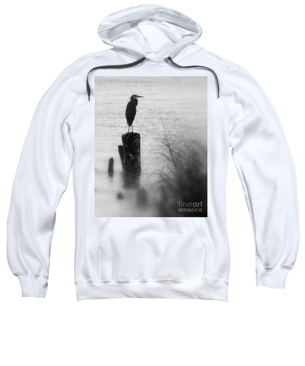 Heron Sweatshirt featuring the photograph Saltwater Sentry by Beth Phifer