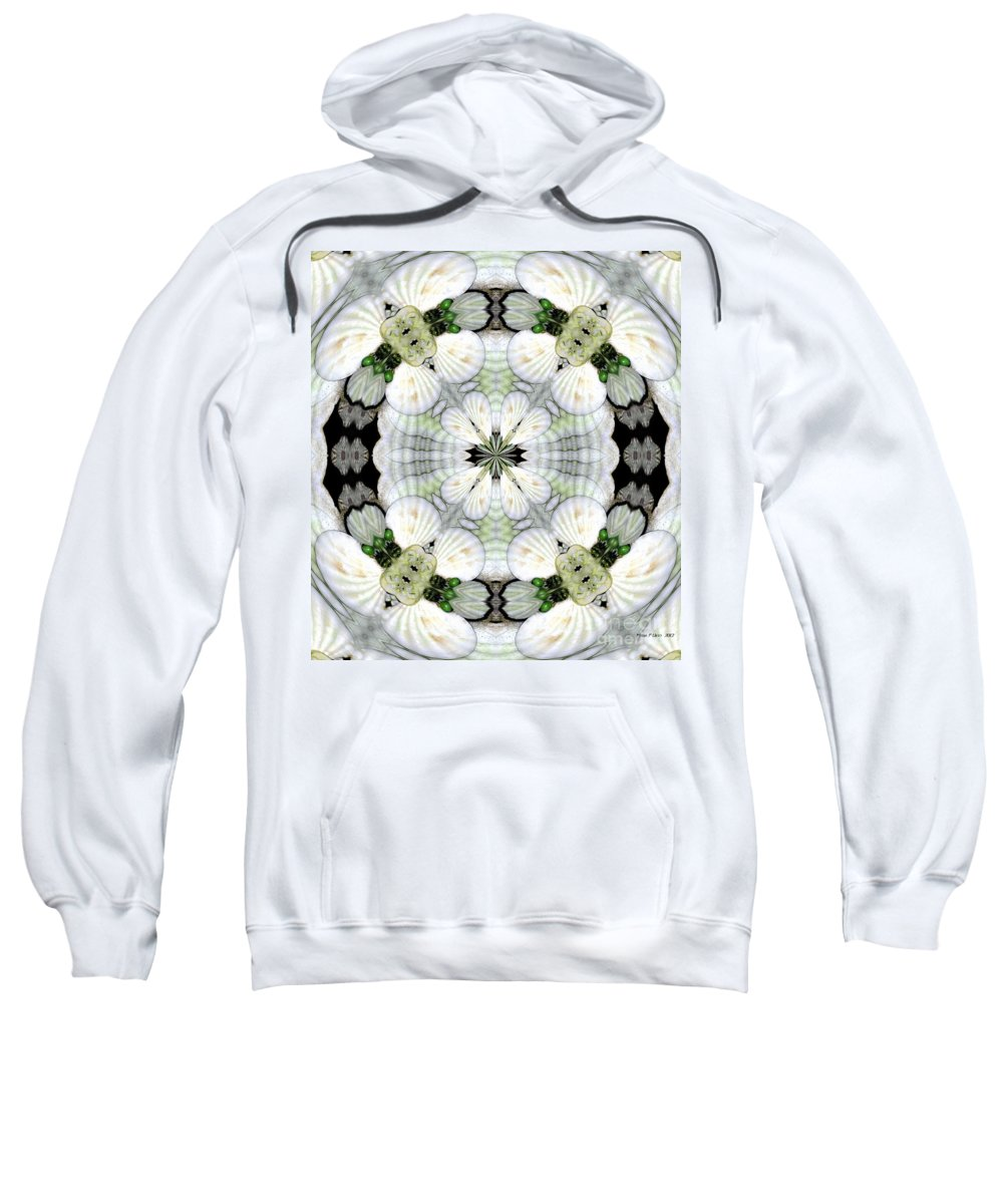 Shell Art Sweatshirt featuring the digital art Shell Art 4 by Maria Urso