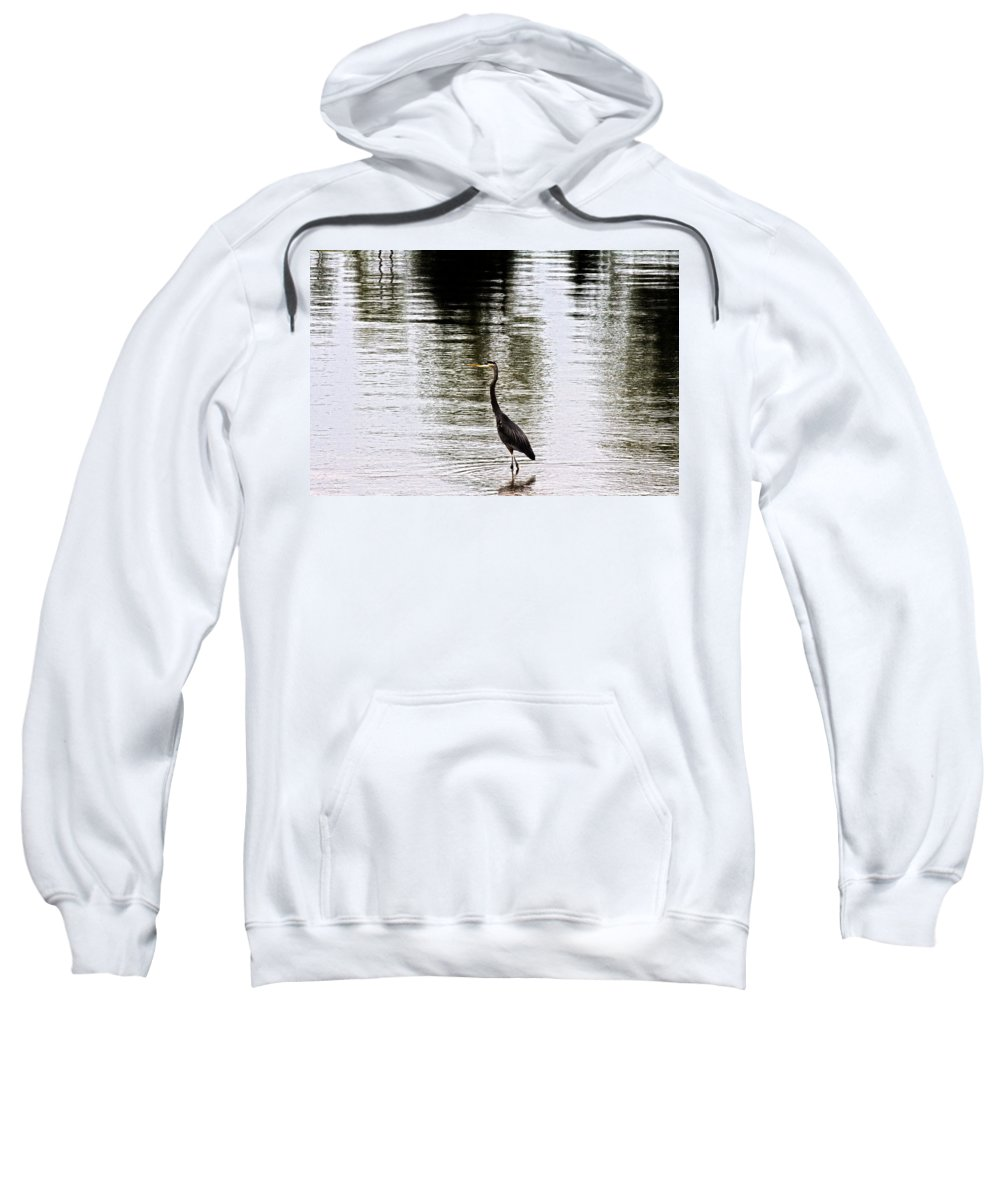 Blue Heron Sweatshirt featuring the photograph Silver Lake by Douglas Barnard