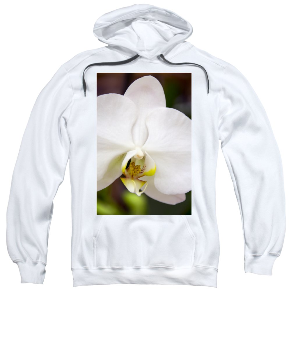Exotic Sweatshirt featuring the photograph Simply Pure Orchid by Angelina Vick
