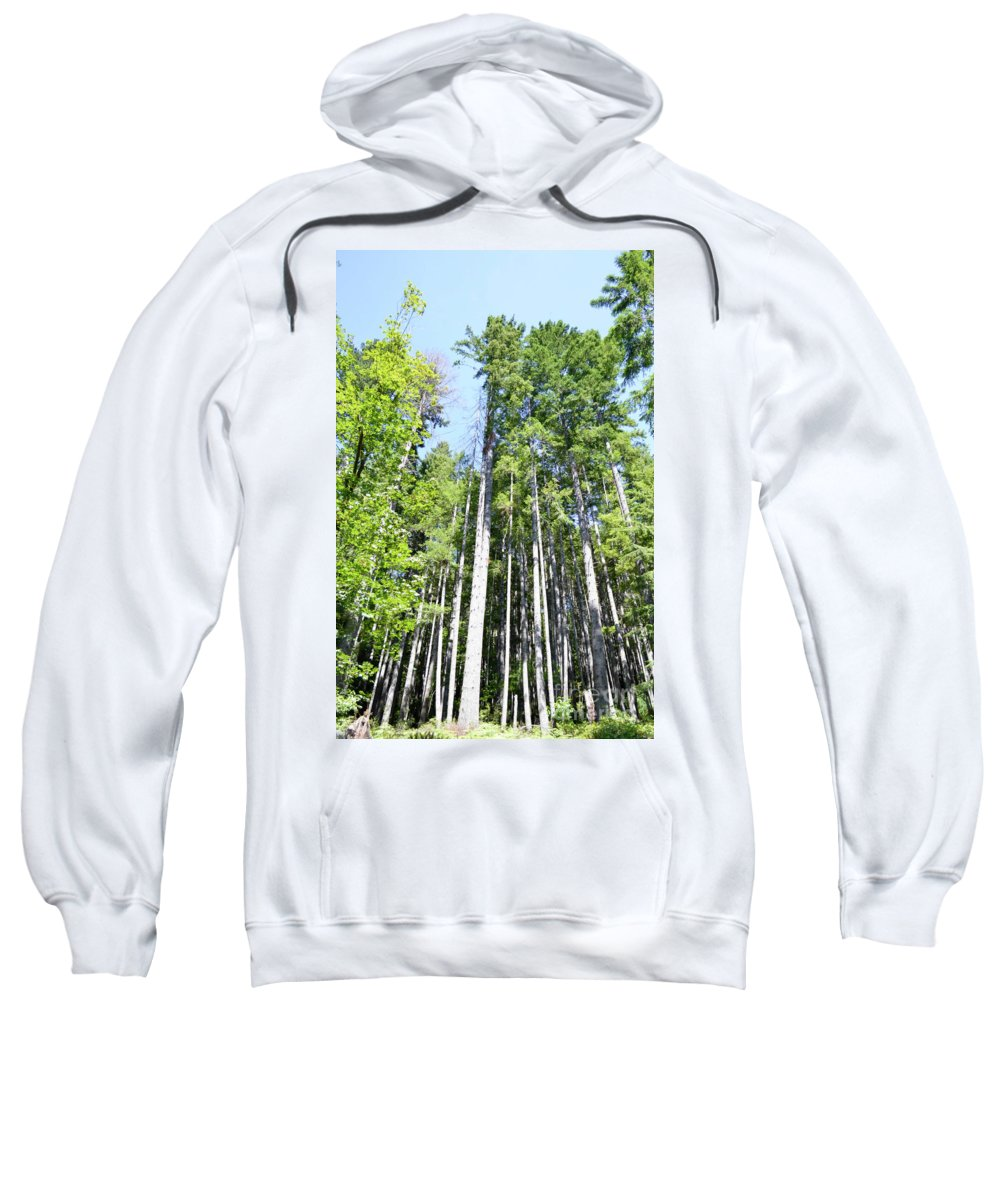 Ocean Sweatshirt featuring the photograph Sky High by Traci Cottingham