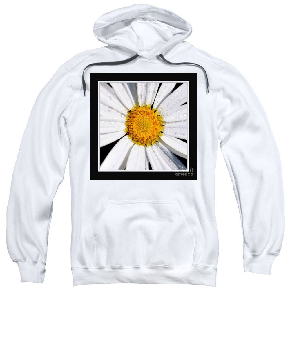 Photography Sweatshirt featuring the photograph Square Daisy - Close Up 2 by Kaye Menner