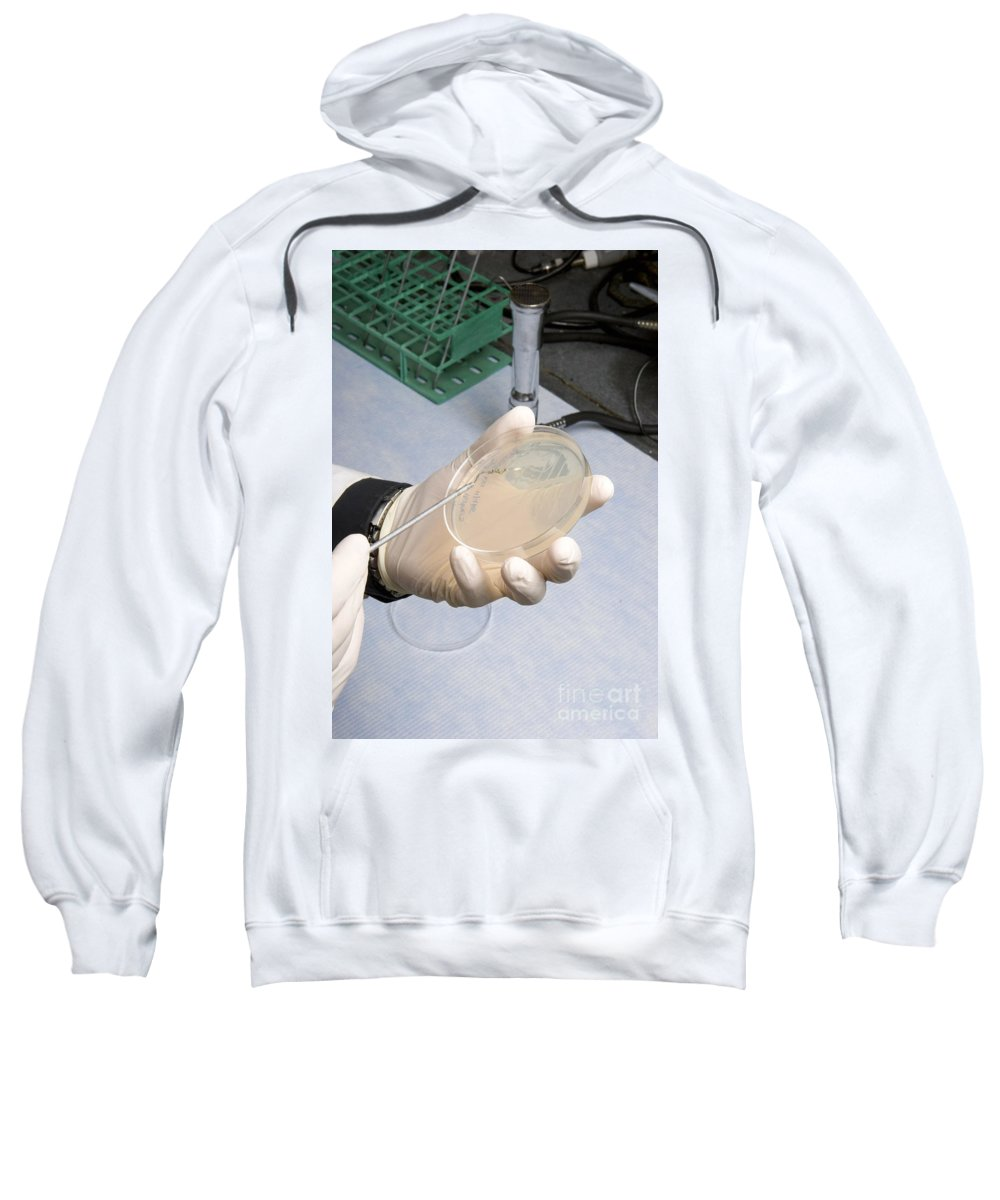 Researcher Sweatshirt featuring the photograph Streaking A Dish by Ted Kinsman