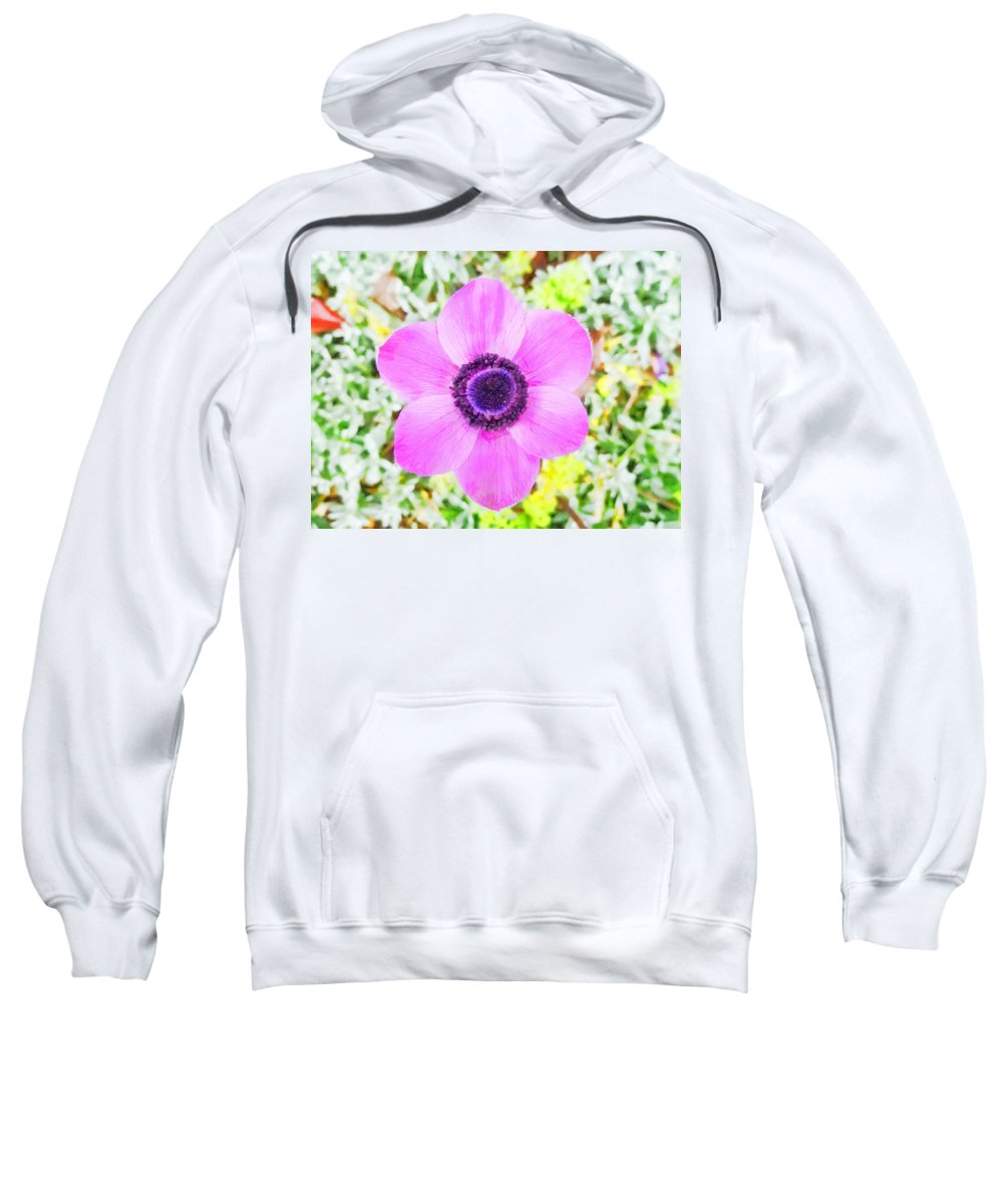 Anemone Sweatshirt featuring the photograph The Anemone Is So Pink by Steve Taylor