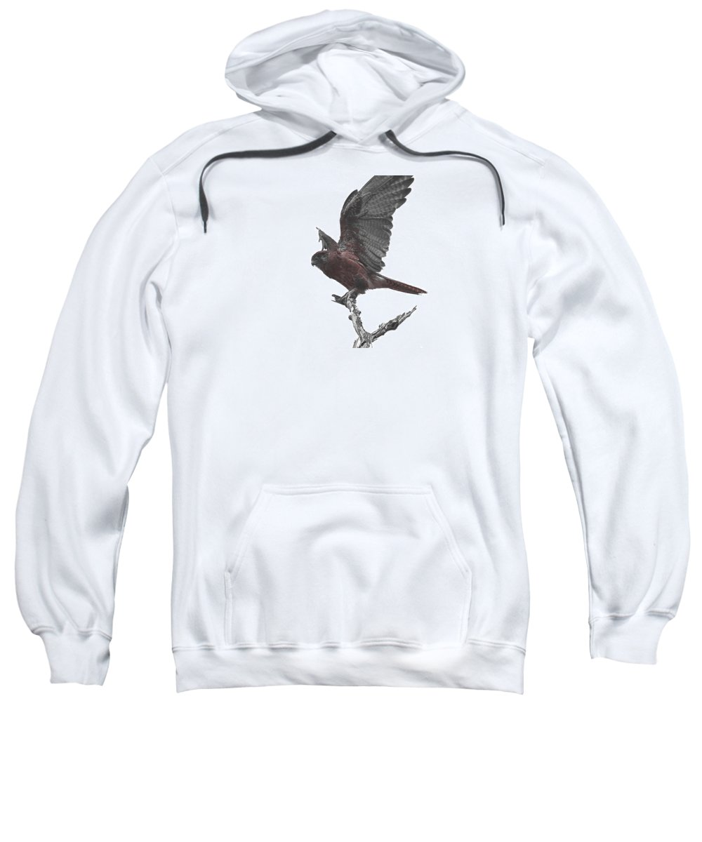 Kite Sweatshirt featuring the photograph The Launch by Douglas Barnard