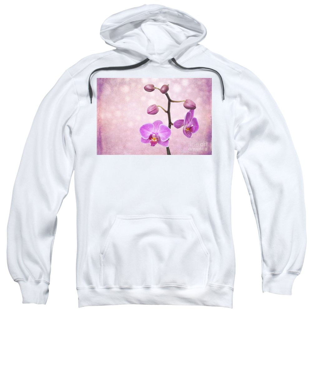 Asia Sweatshirt featuring the photograph The Orchid Tree - Texture by Hannes Cmarits