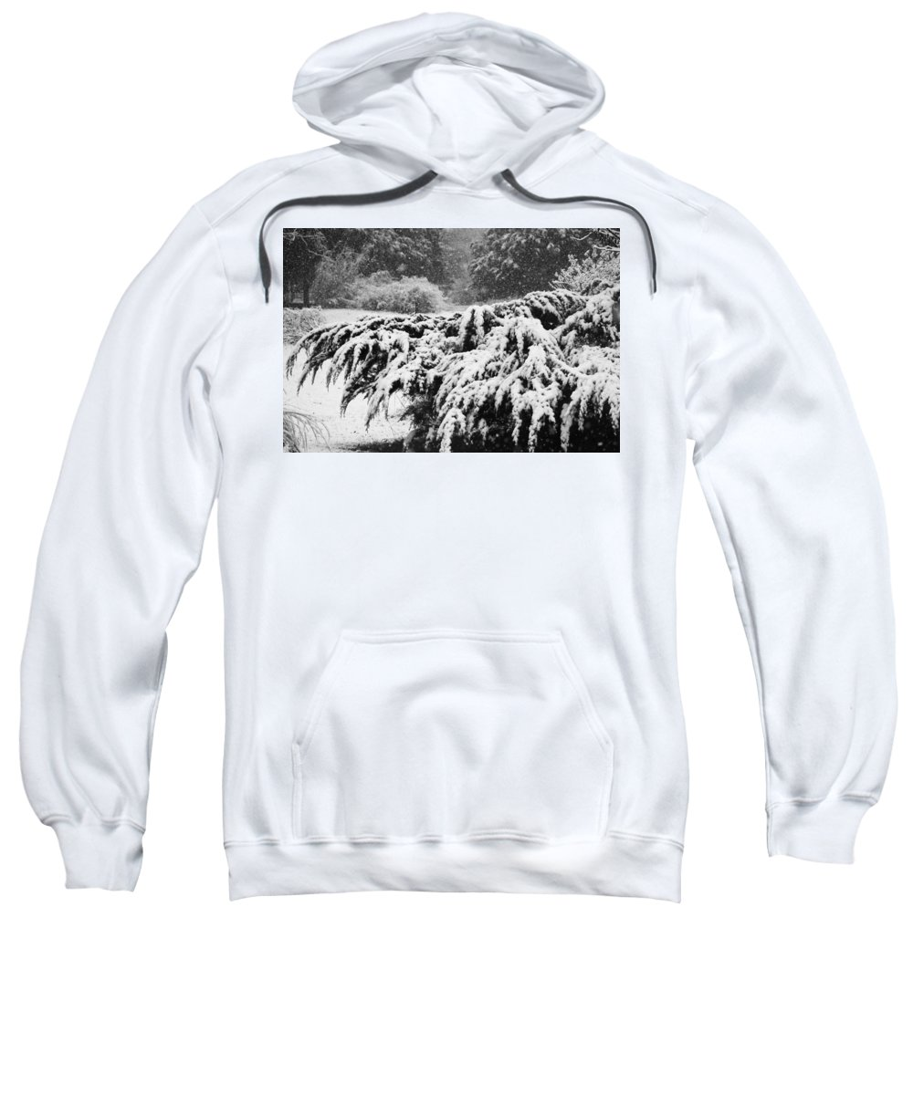 Snow Sweatshirt featuring the photograph Think Snow by Kathy Clark