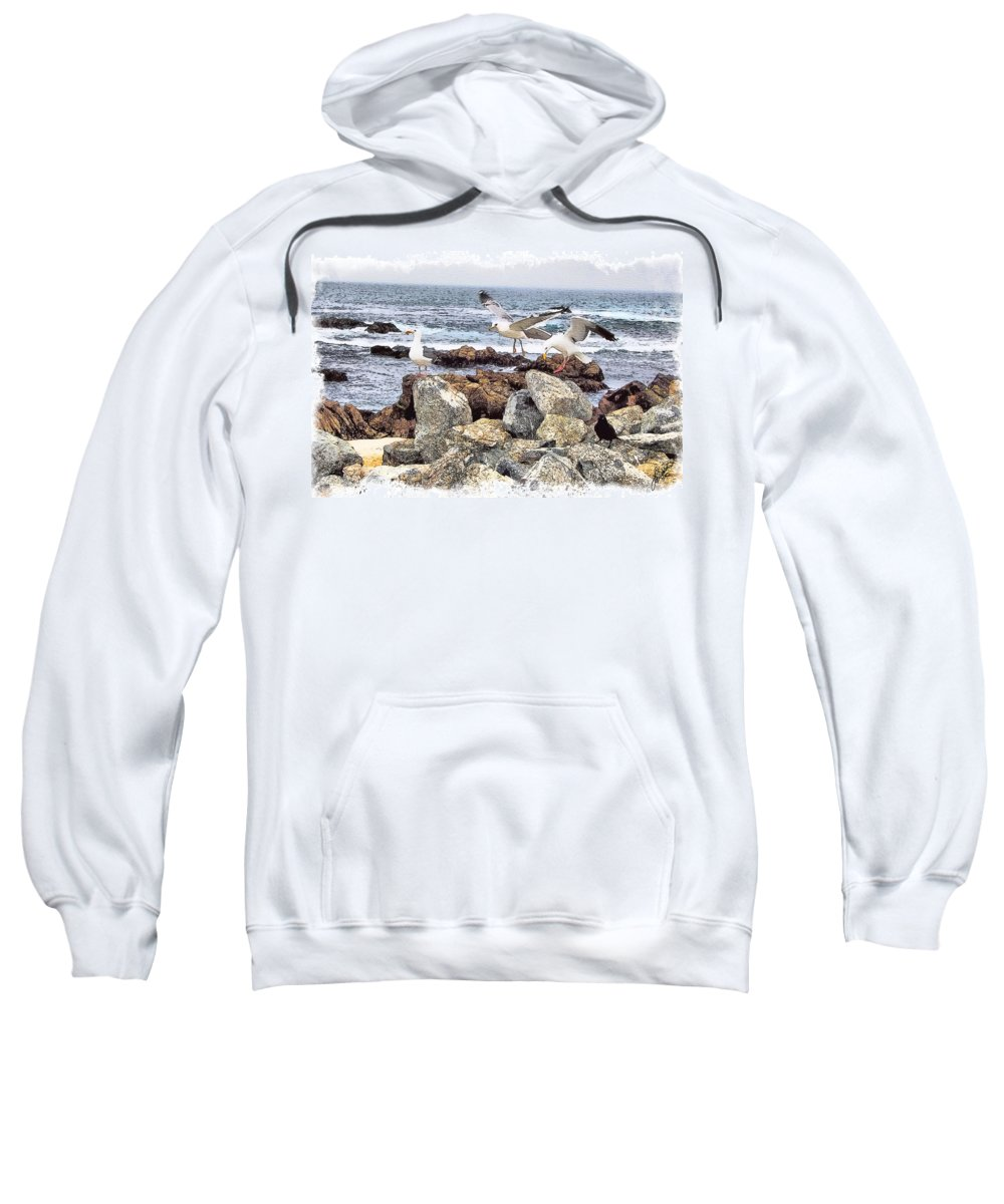Seagulls Sweatshirt featuring the painting Threes Company by Tom Schmidt