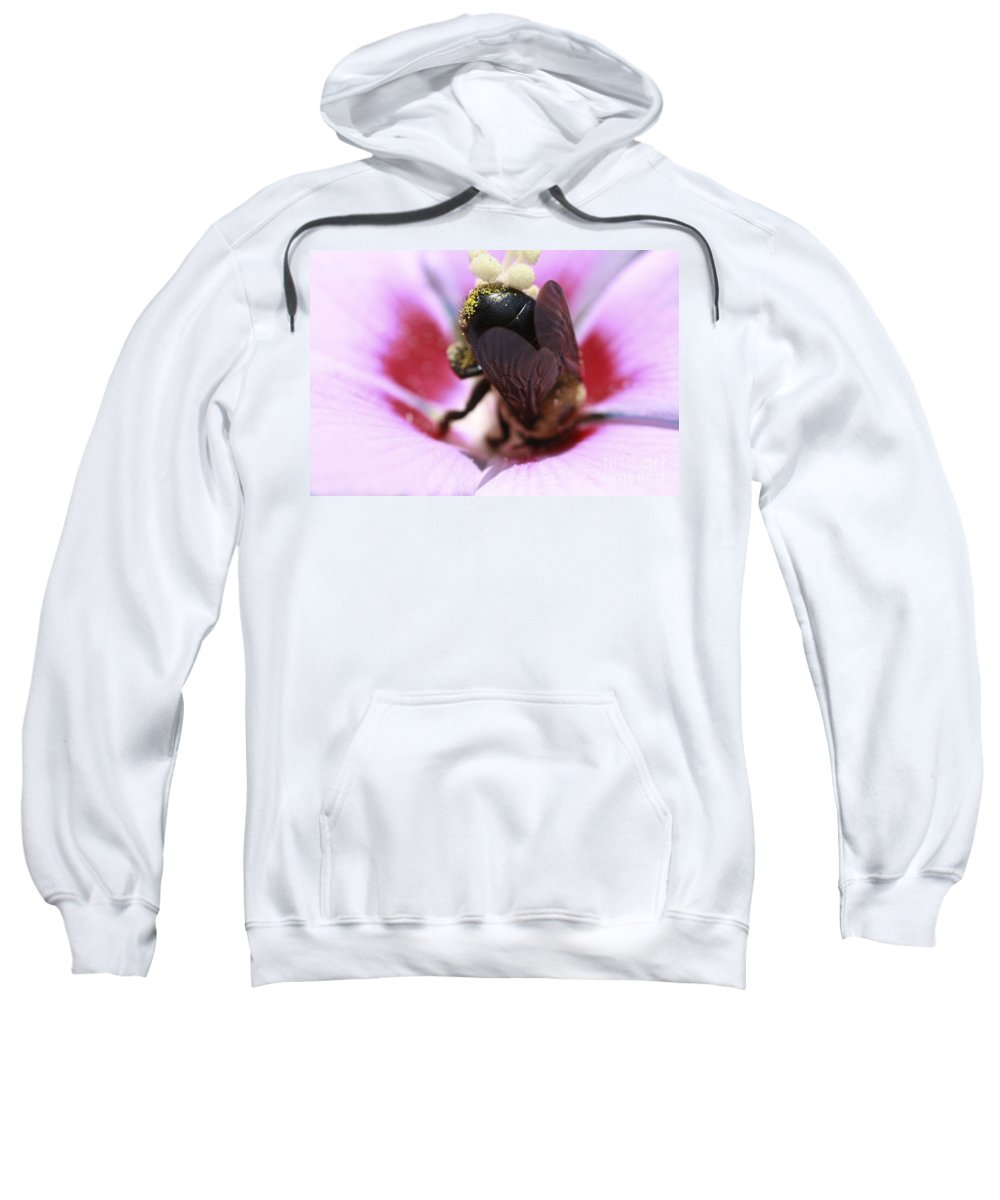 Bees Sweatshirt featuring the photograph Top Heavy by Kim Henderson