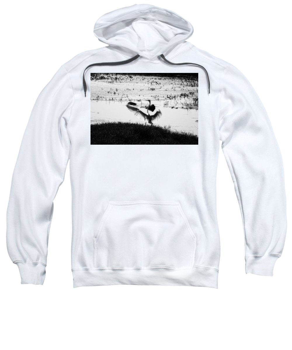 Egret Sweatshirt featuring the photograph Touchdown-black And White by Douglas Barnard
