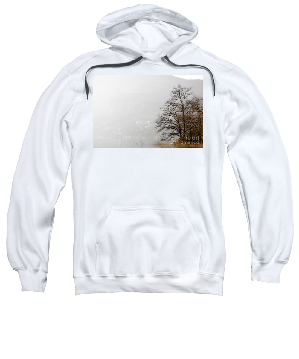 Tree Sweatshirt featuring the photograph Trees And Pampas Grass by Mats Silvan