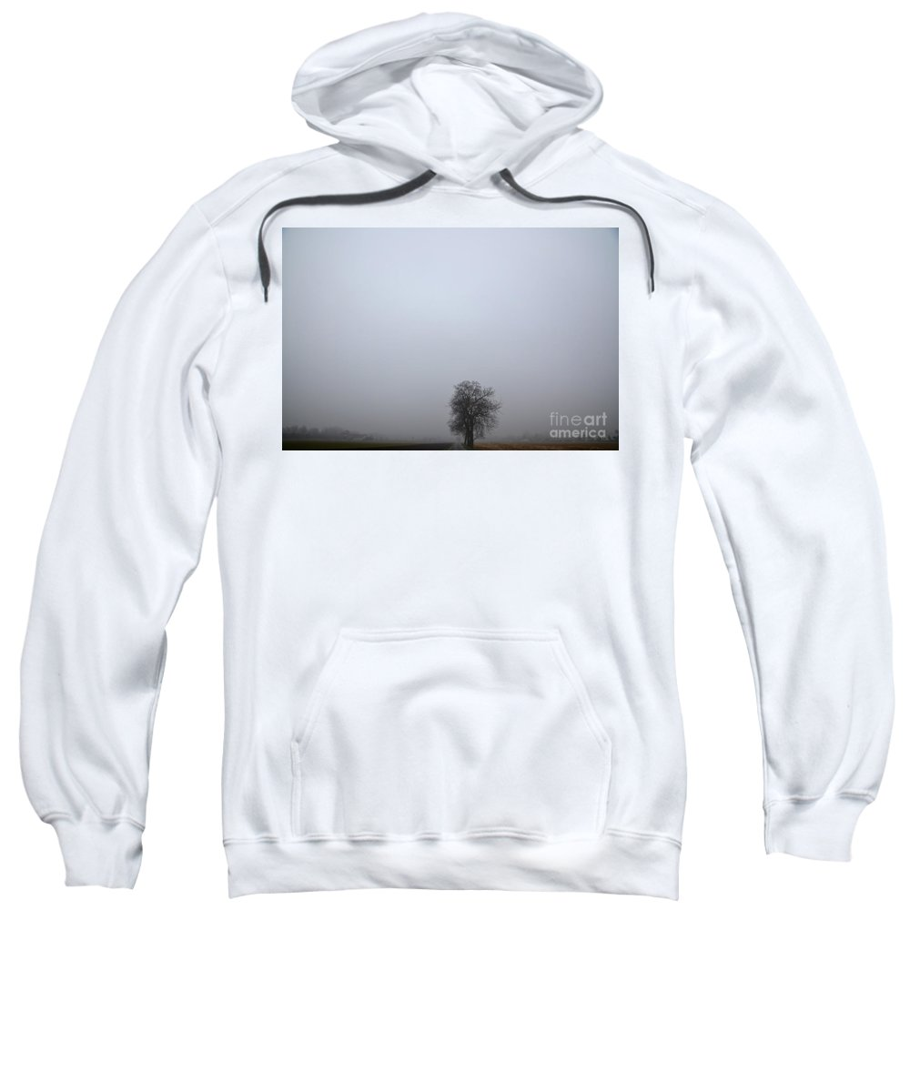 Trees Sweatshirt featuring the photograph Trees On The Road by Mats Silvan