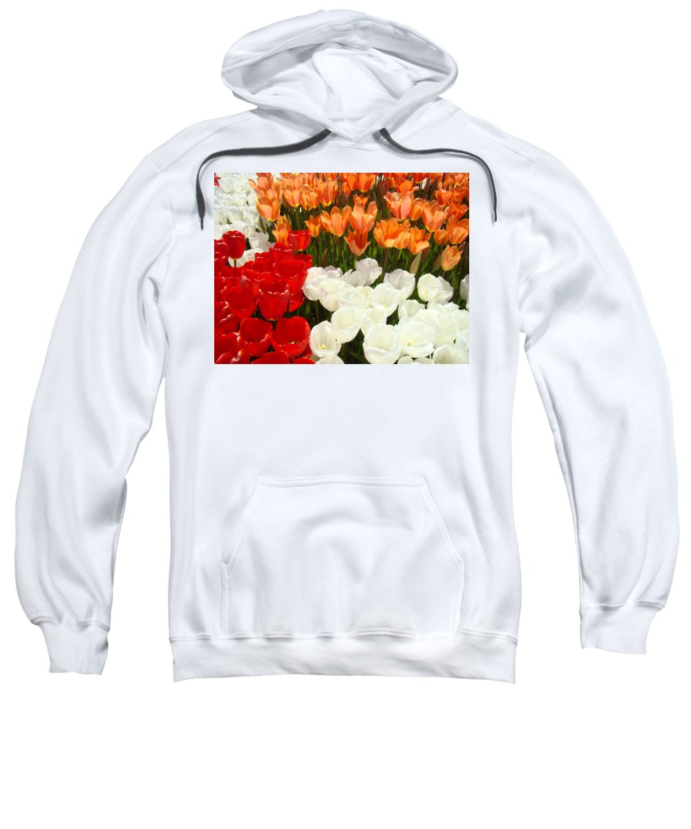 Tulip Sweatshirt featuring the photograph Tulip Flowers Festival Art Prints Floral Baslee by Baslee Troutman