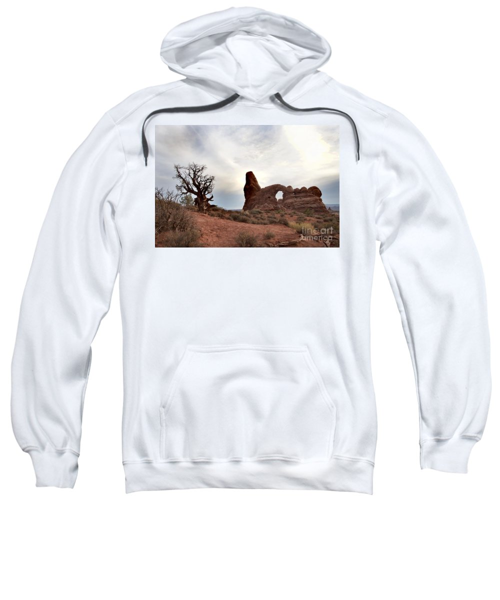 Windows Arches Sweatshirt featuring the photograph Windows by David Arment