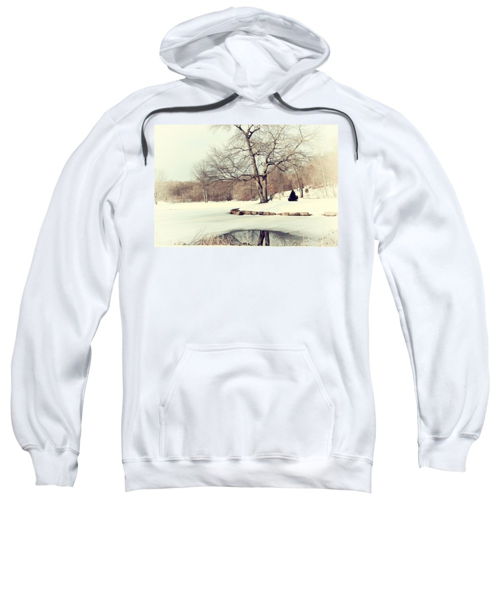 Winter Sweatshirt featuring the photograph Winter Day In The Park by Karol Livote