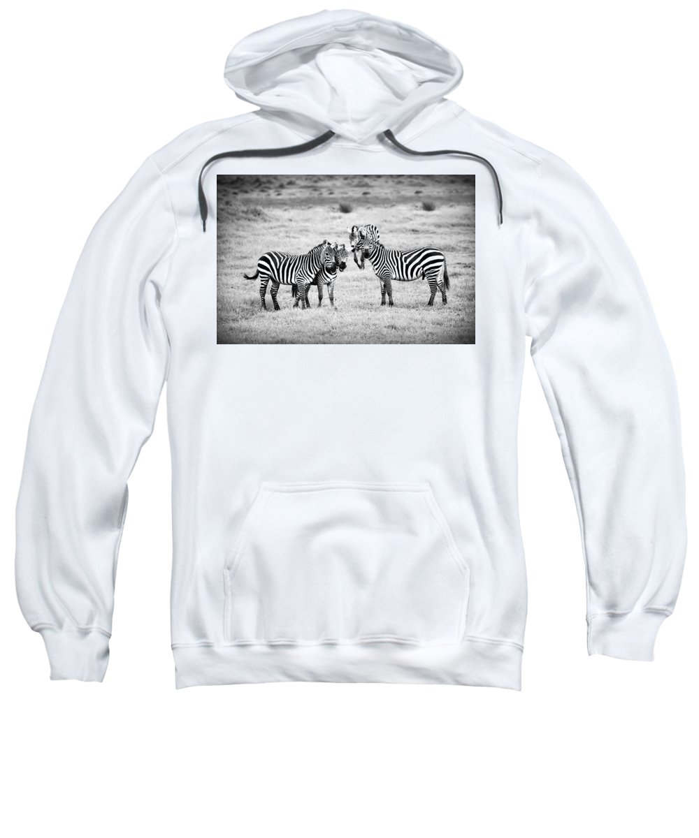 Africa Sweatshirt featuring the photograph Zebras In Black And White by Sebastian Musial